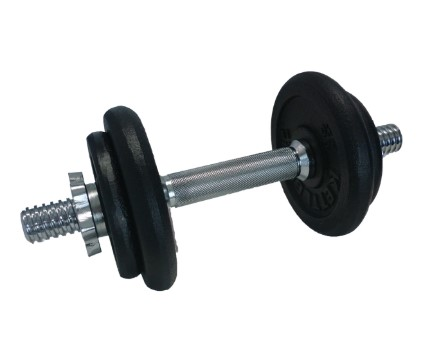 cast iron dumbbell set gifts for men in singapore