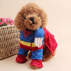 Superman Costume