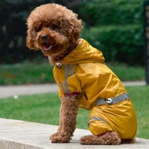 Raincoat Costume