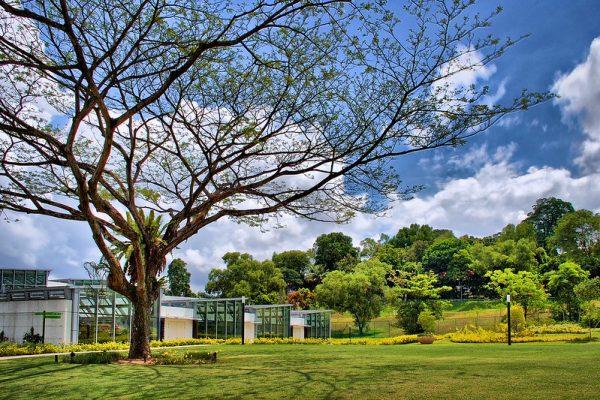 quiet places in singapore hortpark
