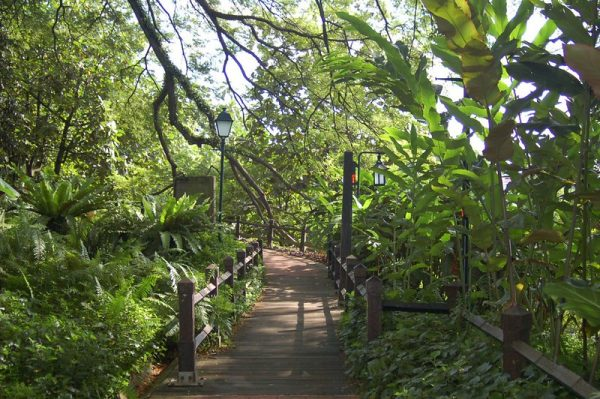 quiet places in singapore fort canning park