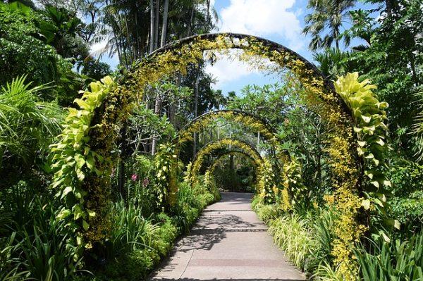 quiet places in singapore botanic gardens