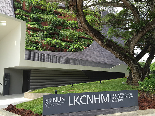 Instagram Worthy Places Singapore Lee Kong Chian Natural History Museum