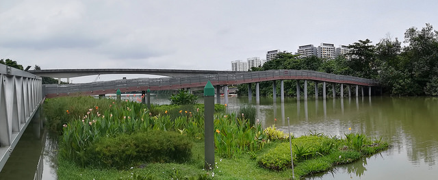 Instagram Worthy Places Singapore Sengkang Floating Wetland