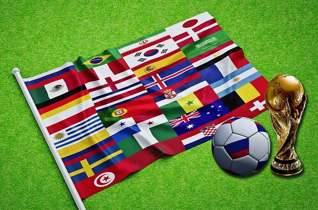 Participants Flags World Cup 2018