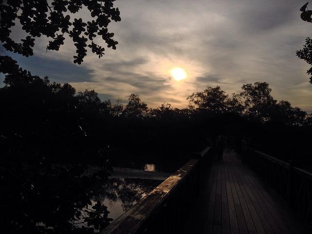 Sungei Buloh Wetland Reserve Sunset in Singapore