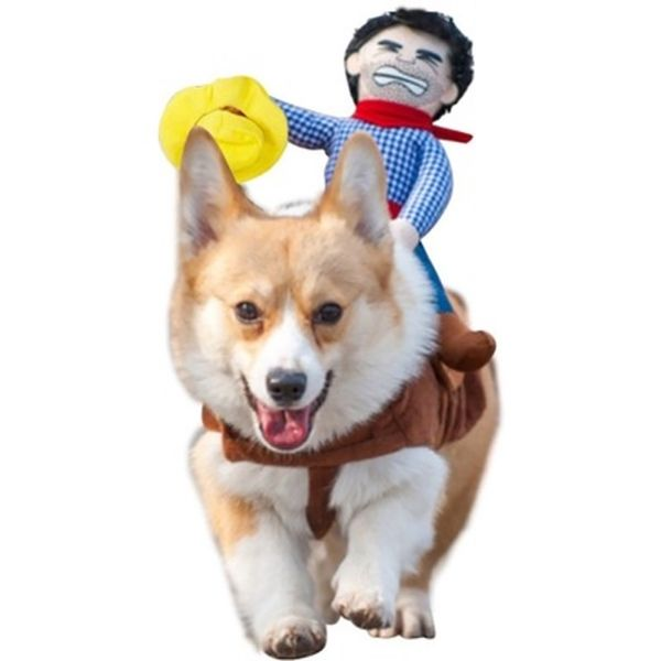 halloween costume ideas pet dog corgi cow boy