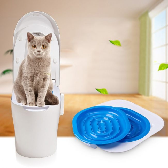 pet toilet seat safety