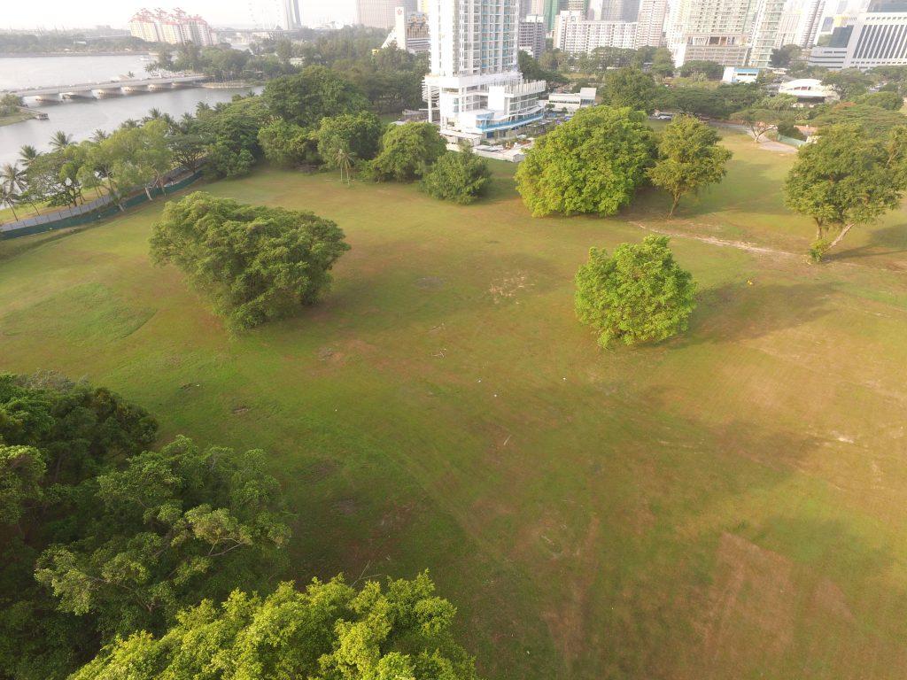 Kallang Road Field