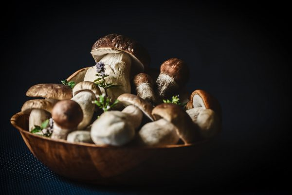 mushroom vitamin b3 best vitamins for skin