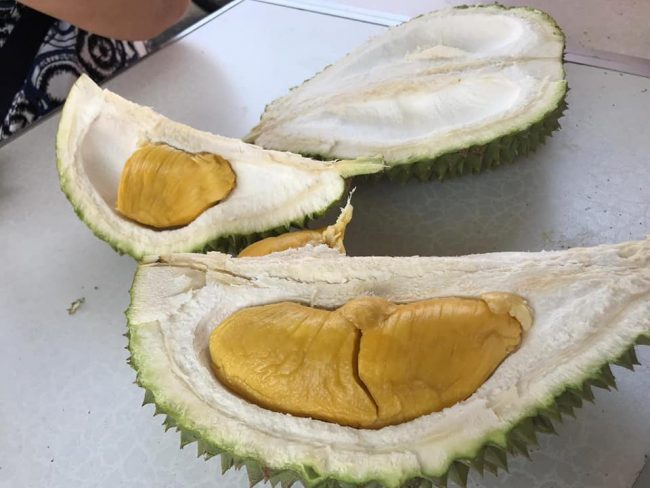 durian delivery singapore just durian husk mao shan wang