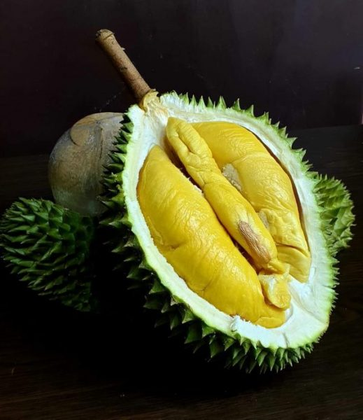 durian express delivery singapore same day old tree mao shan wang pahang malaysia