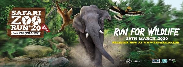 safari zoo run singapore running events in 2020