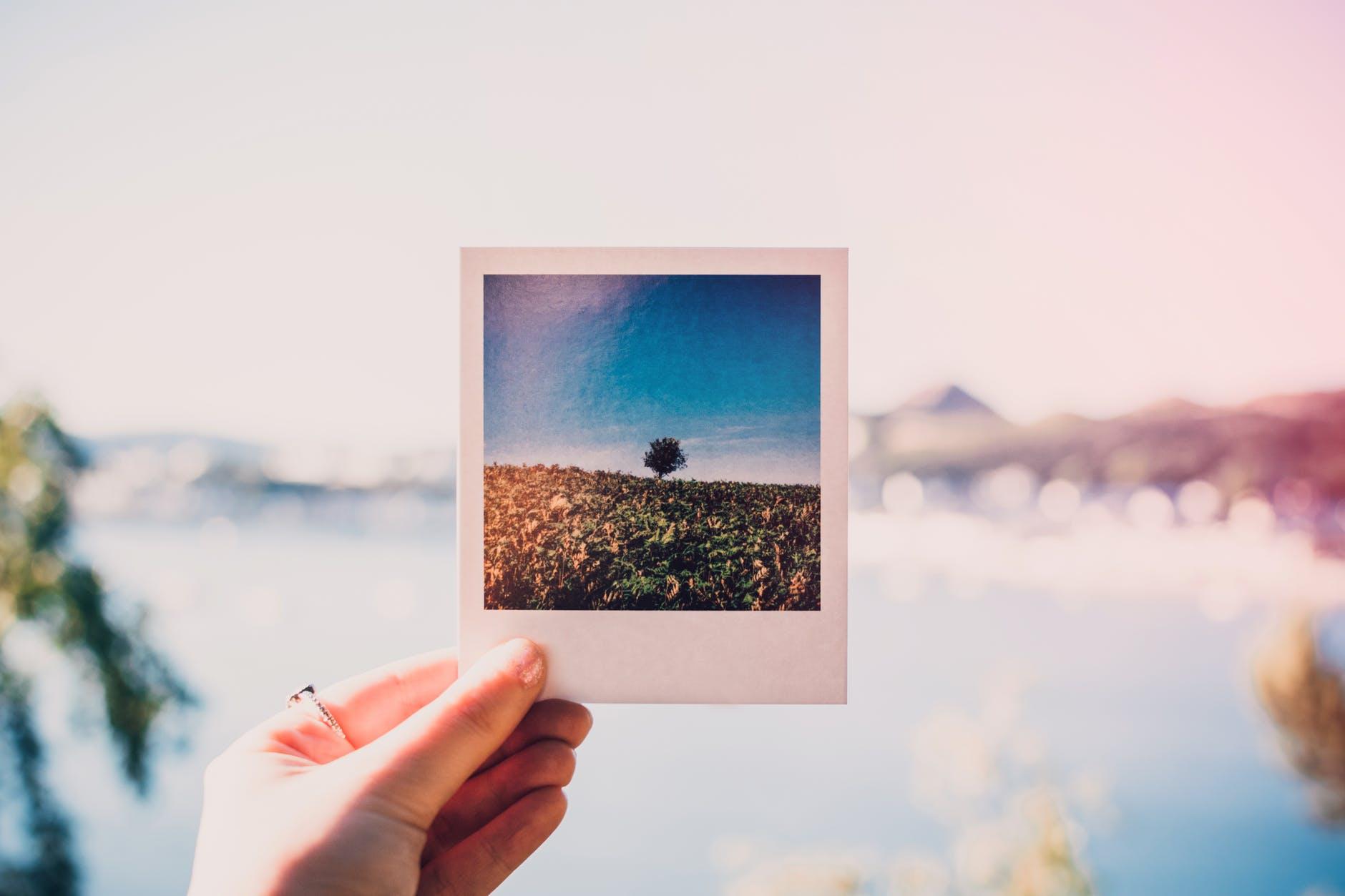 best portable photo printer photograph