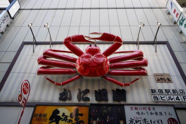 seafood meal japan