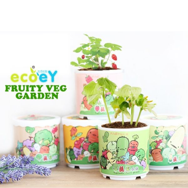 children's day gift idea for kids ecoey diy mini indoor garden