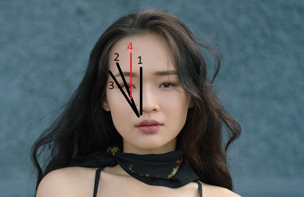 how to draw eyebrows s shaped brow tips