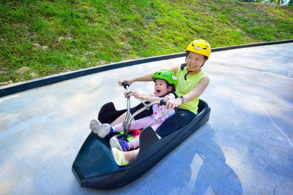 december school holidays 2019 activities for kids skyline luge sentosa