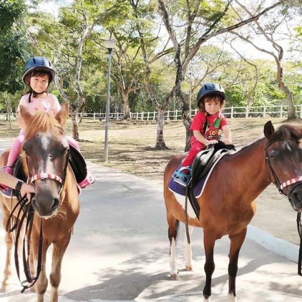 2020 december school holidays fun activities for kids gallop stable horseback riding holiday pony camp