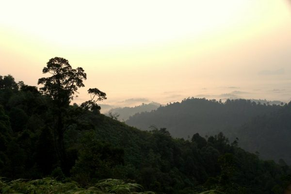 bukit panorama malaysia road trip from singapore