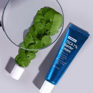 Acne Scar Removal Wishtrend Teca 1% Barrier Cream