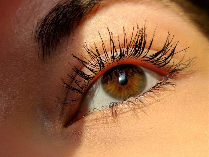 best eyelash serum longer fuller eyelash