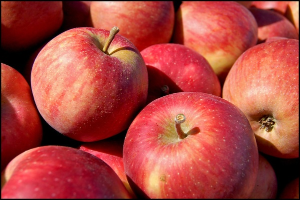 apples foods to boost immunity systems