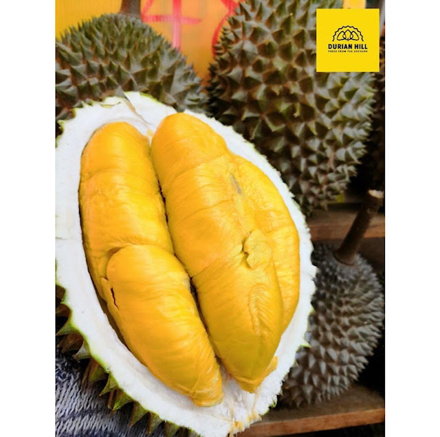 durian hill delivery singapore