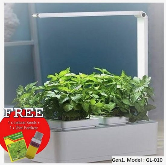 herb garden singapore hydroponics herb planter