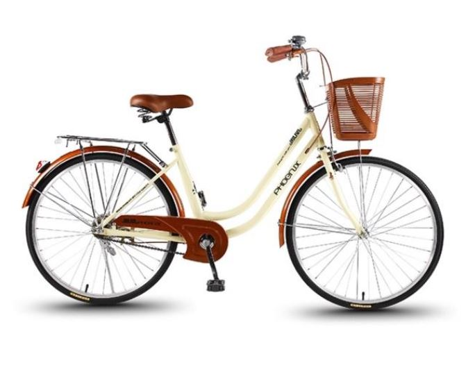 phoenix bike city bikes singapore