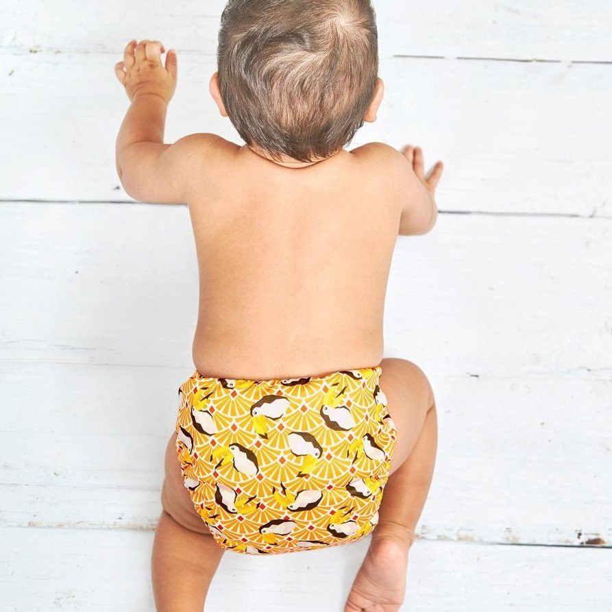 bambino best cloth diapers singapore